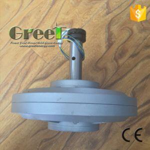 Generador de imán permanente vertical con baja el QPM