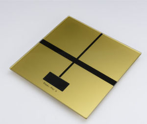 Scala elettronica portatile della scala umana multifunzionale
