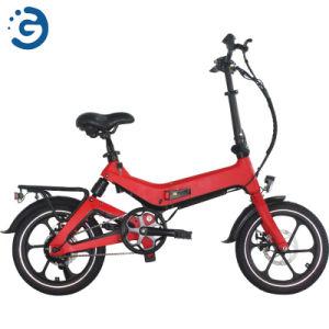 Bicicleta eléctrica plegable 36V 250W 5.2ah ligero Bicicleta eléctrica