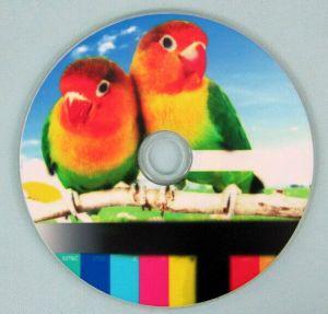 50PCS CD DVD 디스크 인쇄 기계를 인쇄하는 Multil 다채로운 자동차