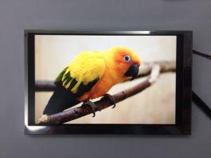 5.8  16:9IPS LCD Module met Al het Bekijken Hoek