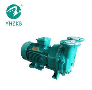 Direkt verbundene Wasser-Schleifen-Vakuumpumpe für ENV-Schaumgummi
