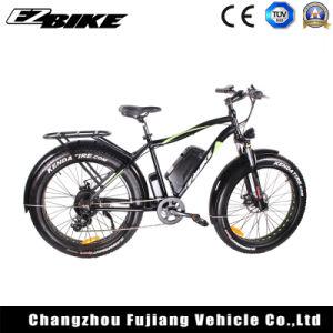 Energía verde Electric bicicleta de montaña con un alto rendimiento Ebicycle