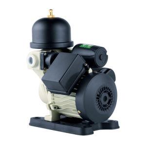 La piccola pompa ad acqua automatica elettrica di pressione evita frequente toglie