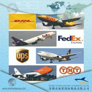 Servicio de mensajería DHL / UPS/FedEx/TNT a todo el mundo