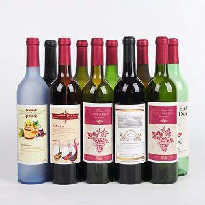 Изготовленные на заводе гладкой плодов вина расширительного бачка
