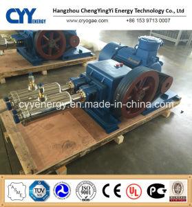 중간 Pressure 및 Large Flow Oxygen Argon Nitrogen Vacuum Piston Pump