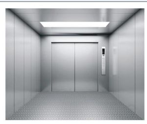 Waren-Höhenruder-Aufzug mit HaarstrichEdelstahl