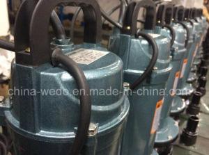 Pompa ad acqua del giardino di Qdx, pompe ad acqua sommergibili elettriche (alloggiamento di alluminio)