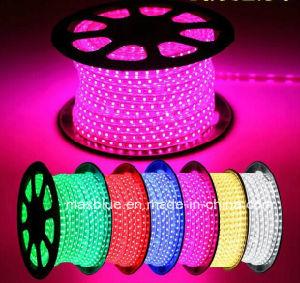 AC110V AC220V tira de LED RGB de alta tensión de cinta de opciones