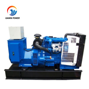 Qualitäts-geöffneter Typ elektrischer Generator