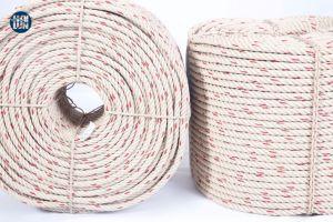 Haute qualité en polypropylène 3/4 Strand PP/PE Twist corde en nylon polyamide Danline Marine pour la pêche