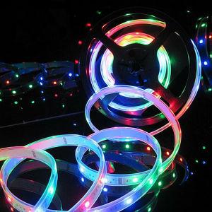 China Price Silicone Tube 5050 Digital Ws2811 LED Strip