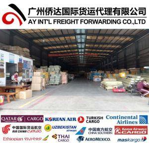 Louer Entrepôt dans Guangzhou/Yiwu, de la Chine