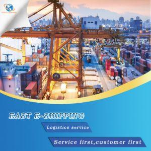 La logistique de la mer/ Transitaire/Service de livraison à partir de Guangzhou/Ningbo/Shenzhen/Shanghai/Qingdao à Odessa