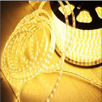 High Voltage/Low Voltage SMD3528/5050 LED Waterproof Flexible Strip Light (BST-SMD)