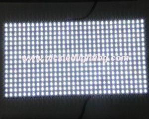 P10 Outdoor Módulo LED Monocromático branco (P10)