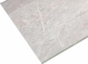 De beste Tegel van de Vloer van het Porselein van het Bouwmateriaal van de Kwaliteit Volledige Verglaasde (600*1200mm)