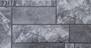 De steen kijkt de BuitenTegels van de Muur (300X600)