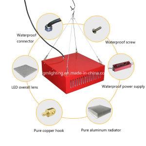 5 años de garantía de protección IP67 de espectro completo de agricultura de 300W de luz LED de la planta crezca para invernadero