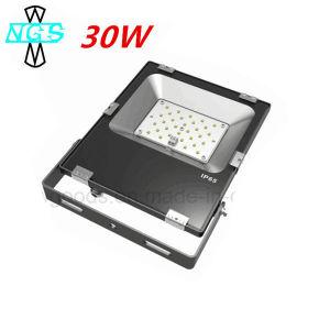 Proiettore esterno 30W di illuminazione LED di nuovo disegno