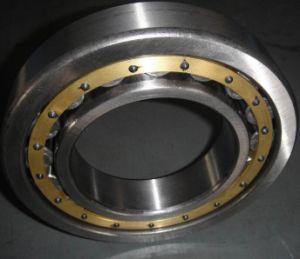 Nj416m SKF/NSK/Китай заводе авто подшипник цилиндрический роликовый подшипник SKF подшипники
