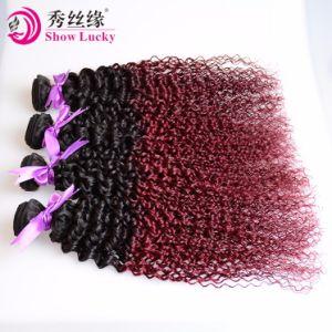 高いRecommened 9A中国1b/99j Ombre倍によって引かれるRemyのヘアケア製品