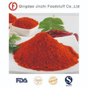 Condimento de color rojo condimento en polvo de pimentón dulce