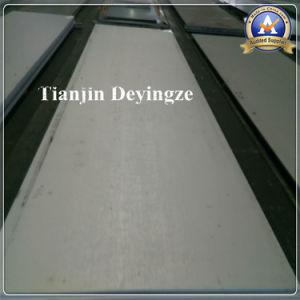 304 En acier inoxydable laminés à chaud no 1 de la plaque de surface