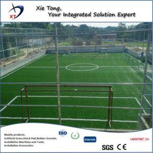 Precio competitivo, la gente de 5X5 de césped artificial de fútbol presentó todo el sistema.