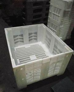 Molde de contêiner dobrável de Injeção de Plástico