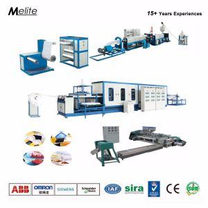 Projet clés en main des aliments à usage unique Boîte Making Machine Mt (105/120)