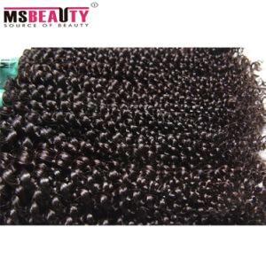 Van China van de Fabriek het Braziliaanse Maagdelijke Goedkope 100% Kroezige Krullende Menselijke Haar Afro van Haar