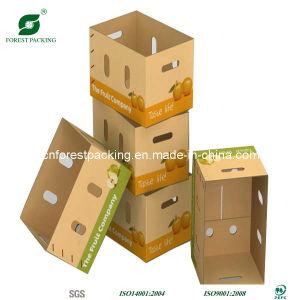 Boîte d'Apple de papier avec fenêtre PVC en Chine
