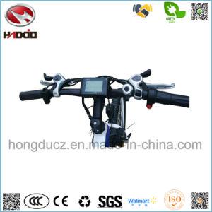 Bateria de lítio de 250 W Electric aluguer de bicicletas MTB Pedal do visor LCD para venda