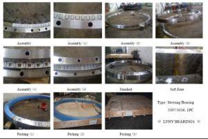 Alimentation de la bague pivotante Rollix Large-Size les roulements (01-3031-00)