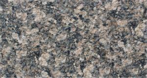 De natuurlijke Steen kijkt de Ceramische Tegel van de Muur