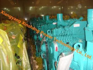 Dongfeng Cummins 발전기 세트 디젤 엔진 (6CTA8.3-G)
