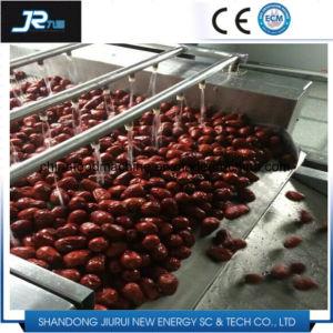 赤い日付の等級分けのクリーニングの磨く乾燥機械