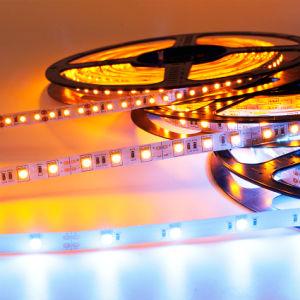 3528/5050SMD variopinti decorativi IP65 impermeabilizzano la striscia flessibile di RGB LED