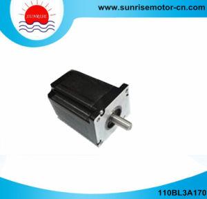 110BL3A170 NEMA42 325V de CC 1300W 6n. Motor dc eléctrico M