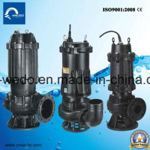 Wqd Serie schmutzig/Sewgae Wasser-Pumpe, gesundheitliche Pumpe