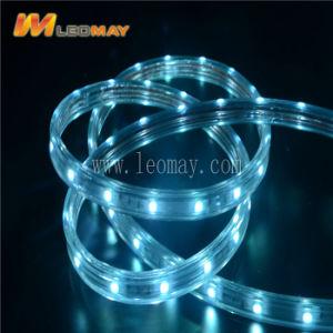 3本のワイヤーセリウムが付いている平らな変更カラーLEDロープライト