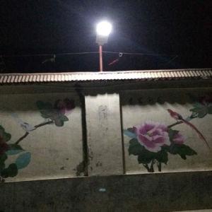 8W太陽統合された街灯