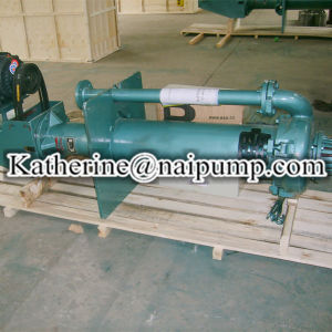 Mining e Sand verticali Solid Liquid Sump Pump