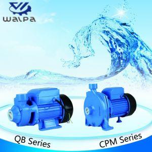 Motor Trifásico 1.5HP Bomba de agua centrífuga de buena calidad