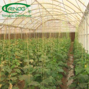 野菜および花のためのマルチスパンの農業のフィルムの温室
