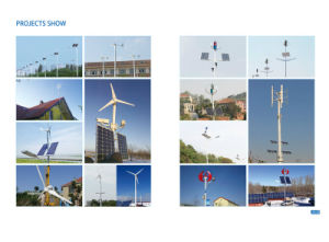 Tipo S 100W 12V Pequeno Jardim Decoration Windmill (SHJ-100S)
