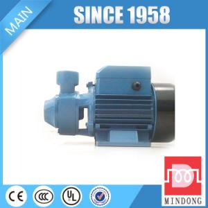 Pompe ad acqua periferiche Qb di IEC della famiglia standard del ghisa