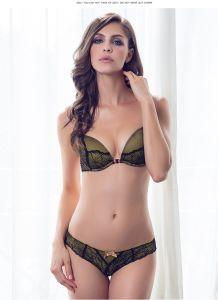 Comercio al por mayor señoras nuevo bra Panti Foto Mujer Bra Set